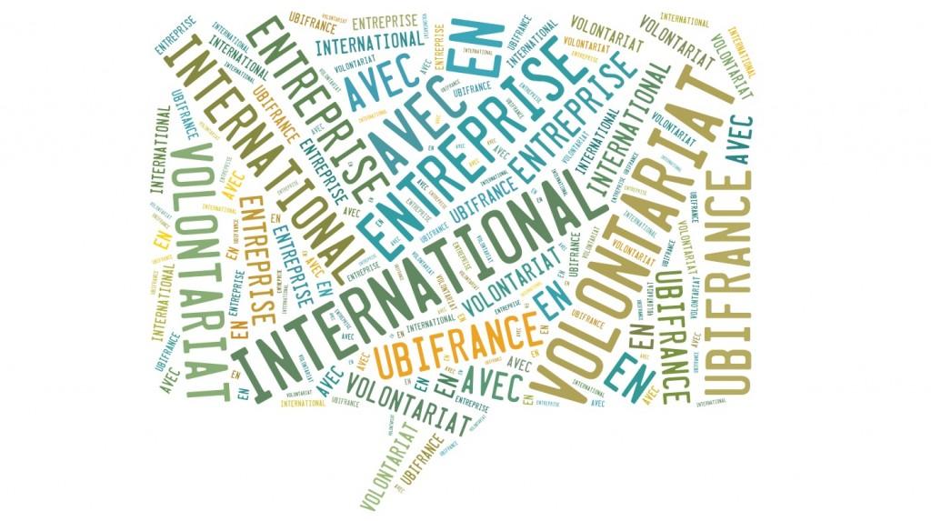 Partir à l'étranger en VIE - Volontariat International en Entreprise